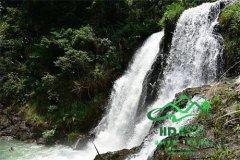 【8月21日】周日穿越从化天溪线惊摄丛林瀑布