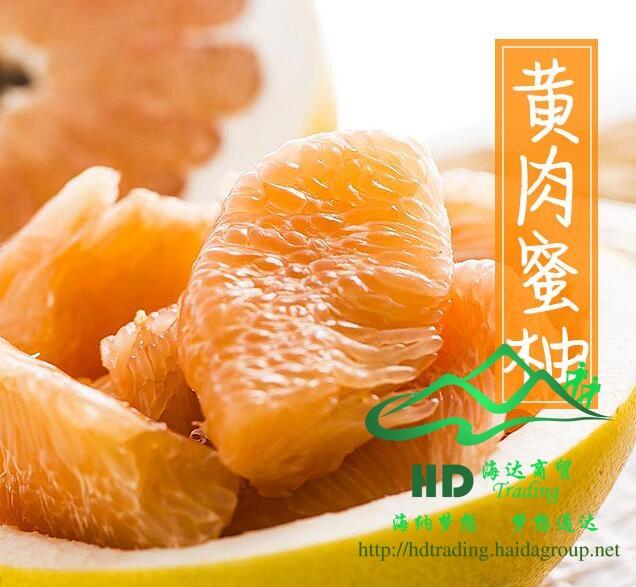 黄肉蜜柚(梅州金柚)